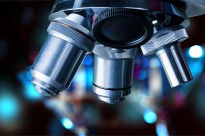 biomedical science internships